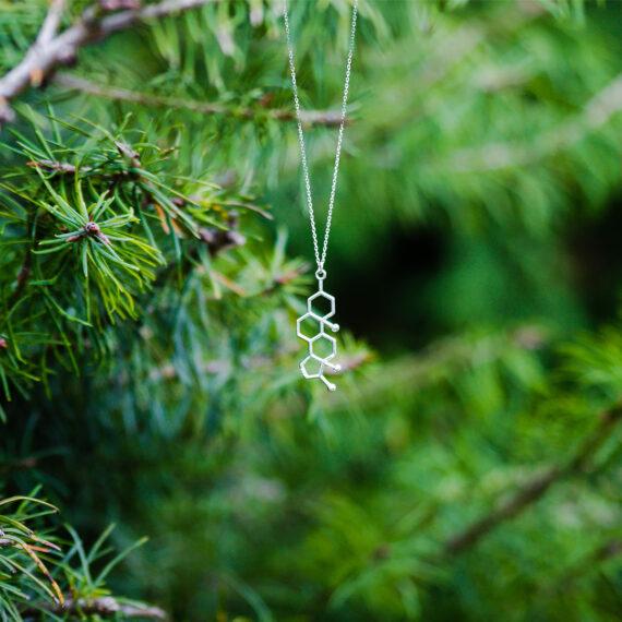 wisiorek z wzorem chemicznym testosteronu na tle zielonego drzewa
